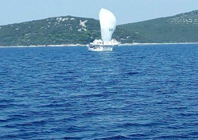 yachtlife011